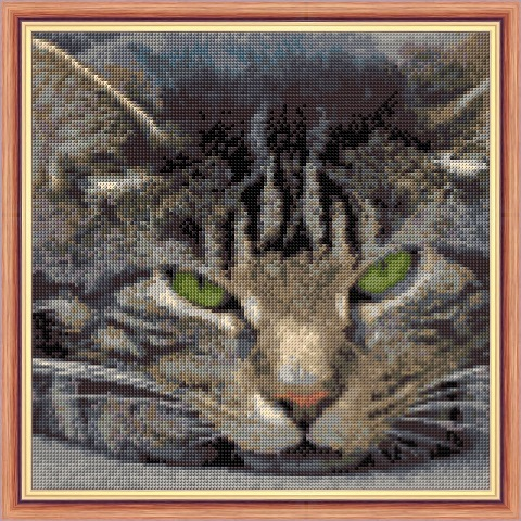 Cat - Grey Tabby - Face Portrait - Cross Stitch