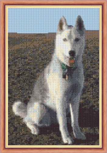 "Husky Dog (Greys), Sitting to Attention - 14 Count Cross Stitch 8"" x 12"""