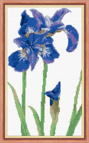 "Iris, Bright Royal Blue Flower - 14 Count Cross Stitch 7"" x 12"""