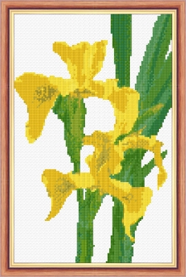 "Iris, Yellow (Wild) Flower - 14 Count Cross Stitch 7"" x 11"""